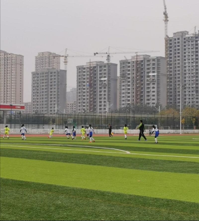 校园足球论文_滨州校园足球_校园足球平台